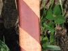 schertscheide-gurtdetail1